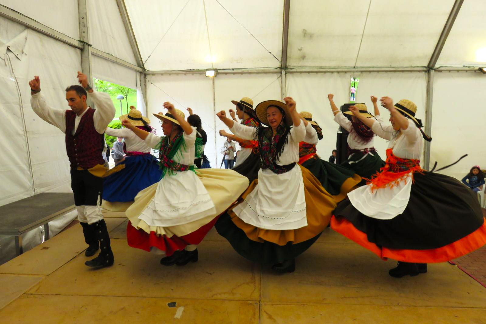 Grupo baile adultos bailando